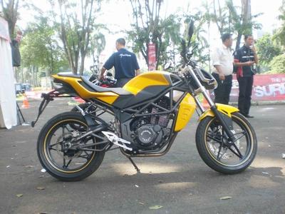 minerva-250-s